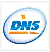 DNS检测