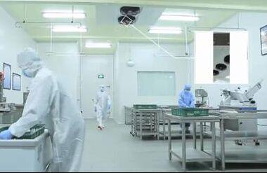 京东:生鲜开放平台入仓产品提升3倍
