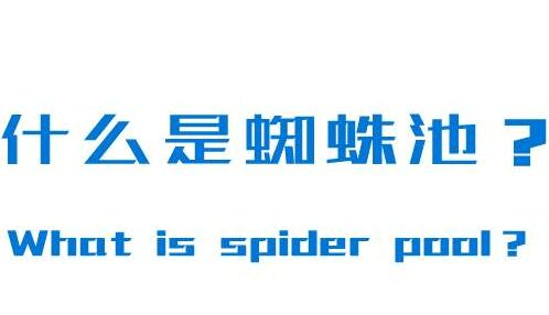 什么是蜘蛛池