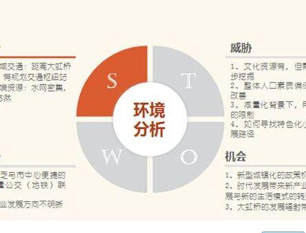 项目SWOT分析