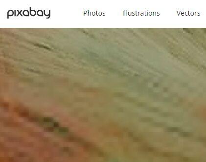 Pixabay:免费用图片和视频
