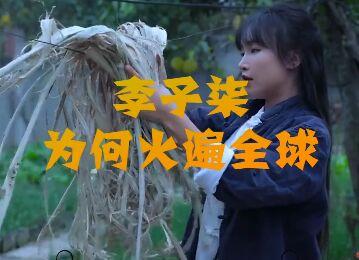 李子柒热爱生活活出了中国人的精彩和自信