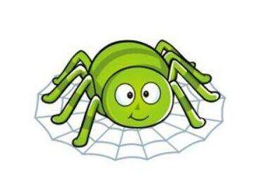 seo收录案例分析蜘蛛池真的能收录网站吗