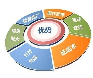 如何做网络营销中国企业网络营销参考文献