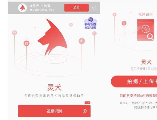 """今日头条""""灵犬""""上线短视频识别功能微信年度账单功能已上线"""